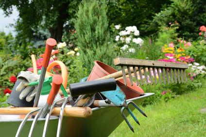 Gartengeräte in der Schubkarre